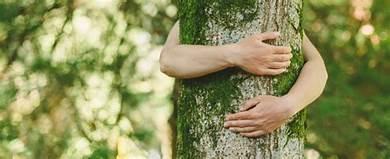 I'll always be a tree-hugger.